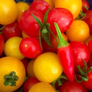 Tomato chutney red and orange (2)